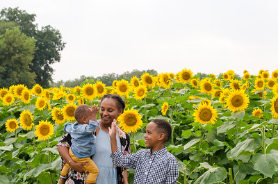 SuzysSnapshots_Sunflowers_Brittany-5996