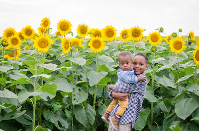 SuzysSnapshots_Sunflowers_Brittany-6118