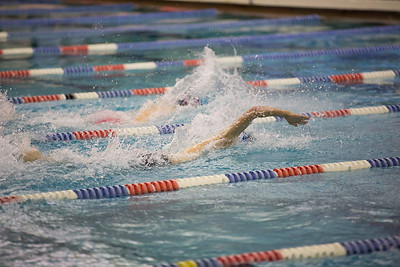 CCS swim _101