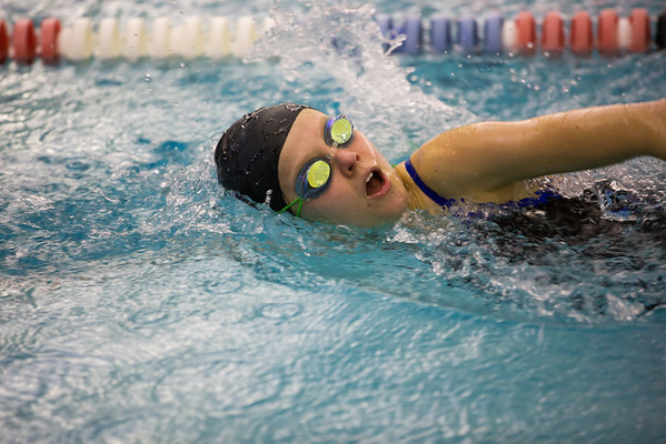 CCS Swimming 2015-2016