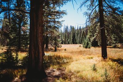 SuzysSnapshots_ColoradoRiver-5116