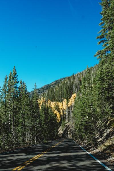 SuzysSnapshots_ColoradoRiver-5237