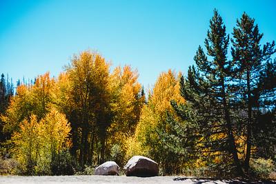 SuzysSnapshots_ColoradoRiver-4959