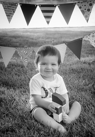 SuzysSnapshots_Jace1stbday-2798-2