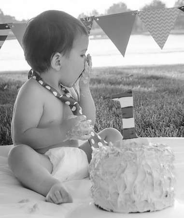 SuzysSnapshots_Jace1stbday-2955-4