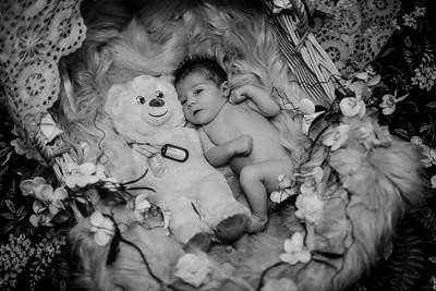 SuzanneFryerPhotography_BrightNewborn-7817