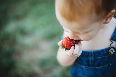 SuzysSnapshots_McClungStrawberryFruitBath-1199