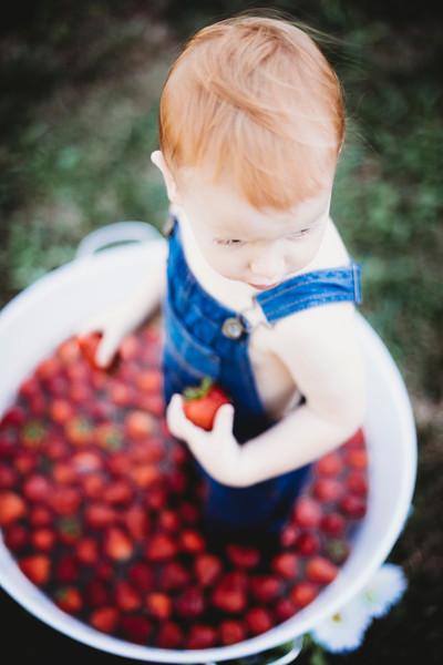 SuzysSnapshots_McClungStrawberryFruitBath-1417