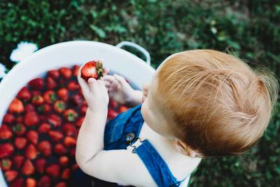 SuzysSnapshots_McClungStrawberryFruitBath-1346