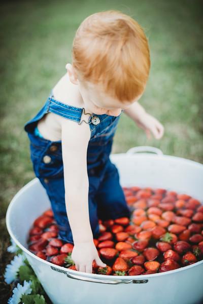 SuzysSnapshots_McClungStrawberryFruitBath-1278