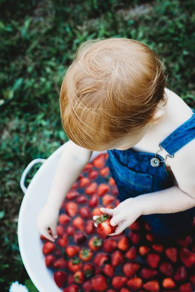 SuzysSnapshots_McClungStrawberryFruitBath-1347