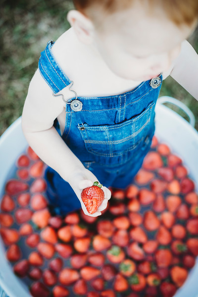 SuzysSnapshots_McClungStrawberryFruitBath-1331
