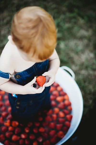 SuzysSnapshots_McClungStrawberryFruitBath-1581