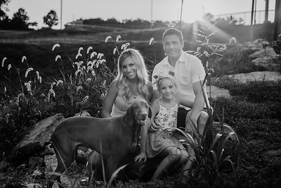 SuzanneFryerPhotography_PerryFamily-4740