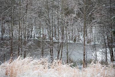 Snow 16 _37