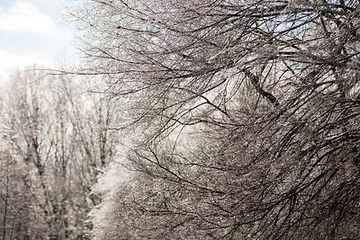 Snow 16 _9