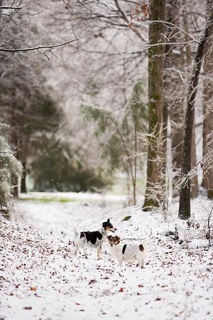 Snow 16 _110