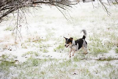Snow 16 _112