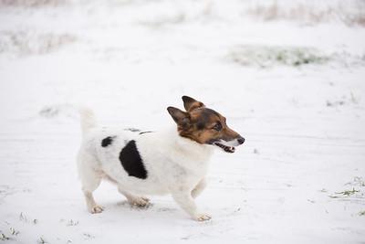 Snow 16 _58