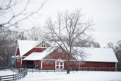Snow 16 _53