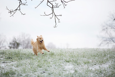 Snow 16 _45