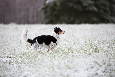 Snow 16 _12