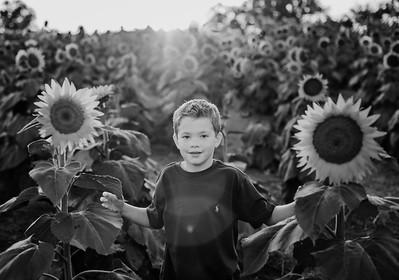 SuzanneFryerPhotography_SchmidtFamily-8828