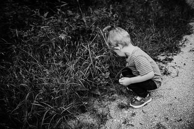 SuzanneFryerPhotography_ShipleyFamily-3574
