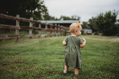 SuzanneFryerPhotography_ShipleyFamily-4310