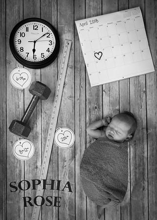 SuzysSnapshots_SophiaRose-2-2