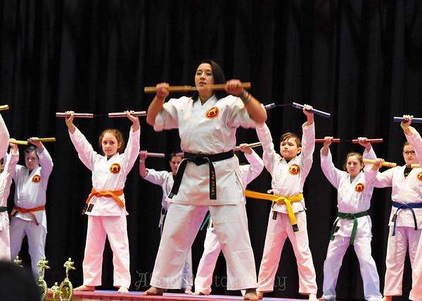 2017 Tai Kai Martial Arts -  - Dorynkski Elementary School, Southington CT