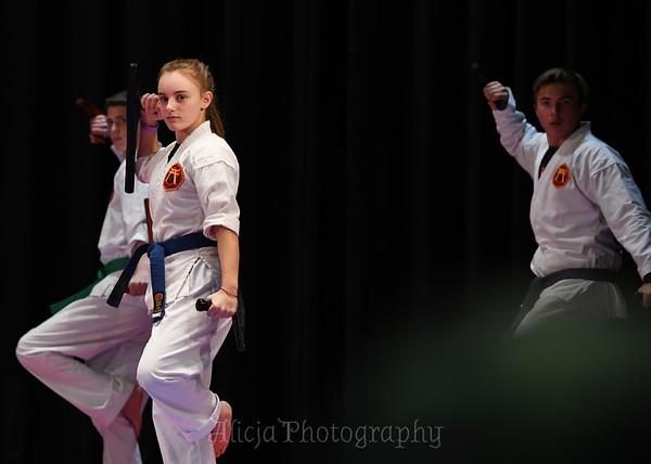 2018 Tai Kai Martial Arts - Dorynkski Elementary School, Southington CT