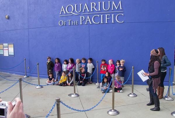 Aquarium - 2-2013
