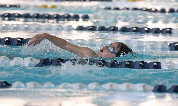 Swimming Pics