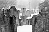 Abington, PA cemetery