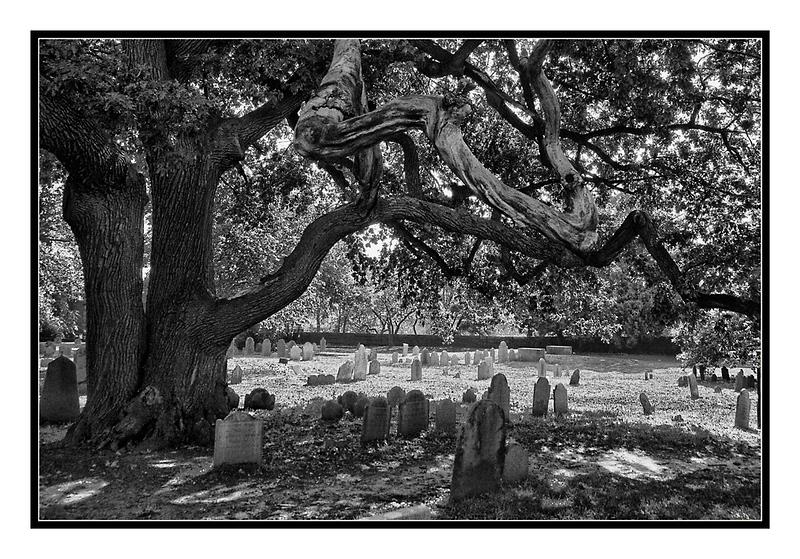 Salem, MA Graveyard