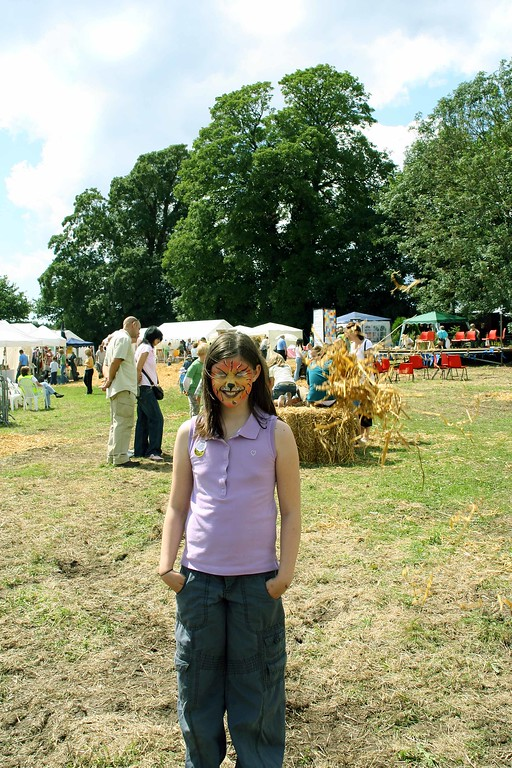 Caerleon Arts Festival 2007
