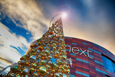 Christmas Trees at Friars Walk Shopping Centre Newport Wales.