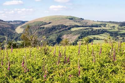 Mynydd Machen views -20 Twmbarlwm Hill