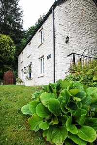 Tintern Abbey Cottage in Tintern, South Wales 11