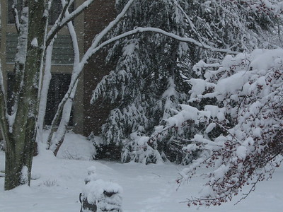 One of our many big snowfalls this winter