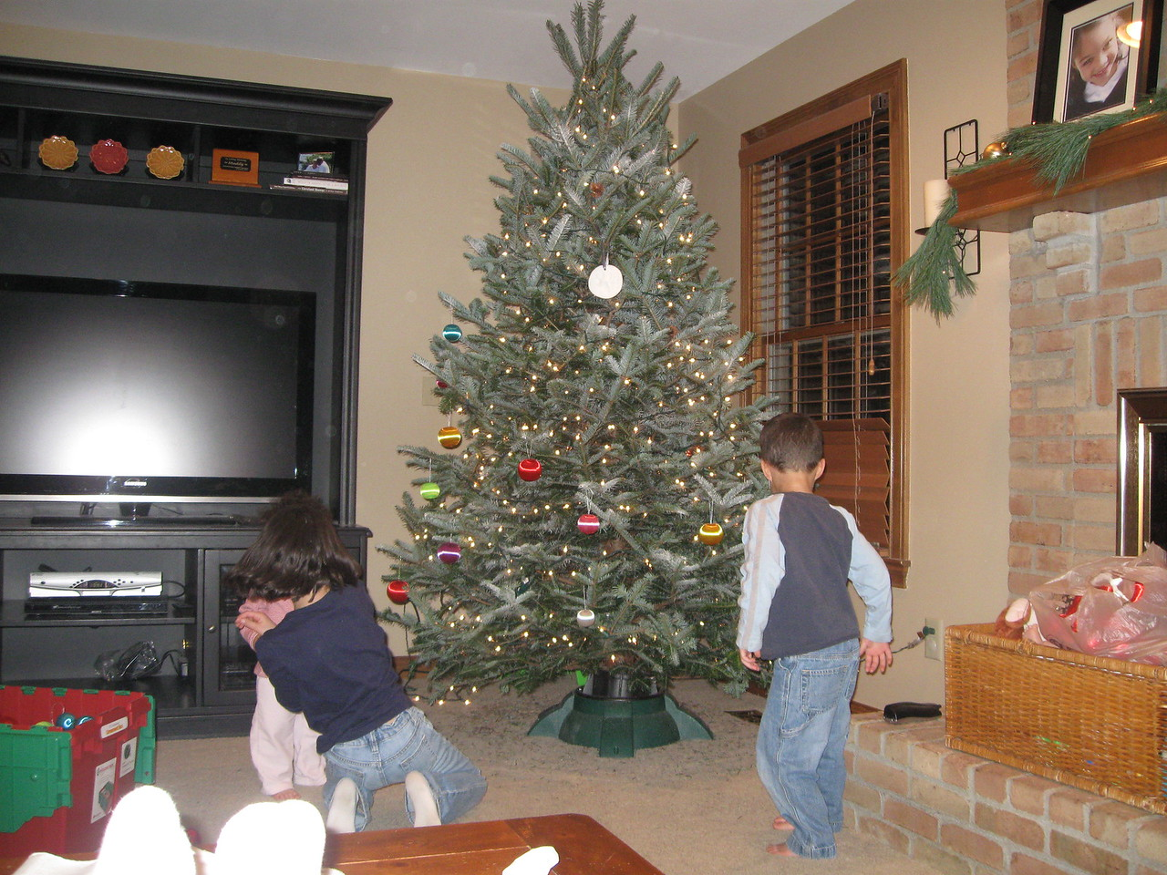 For the most part, the kids decorated the tree all by themselves!