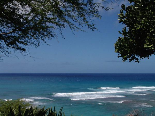 Hawaii1 070