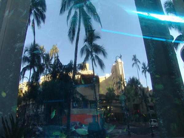 Hawaii1 036