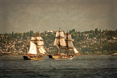 Tall Ships in the Sound