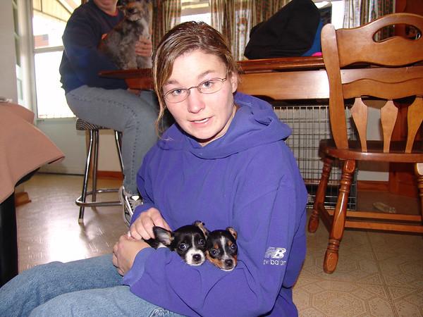 carla'sWdresshop-g-ma dogs 076