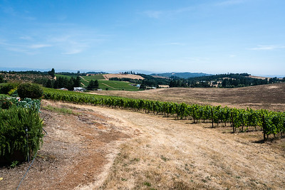 You can see Coria Estates Winery