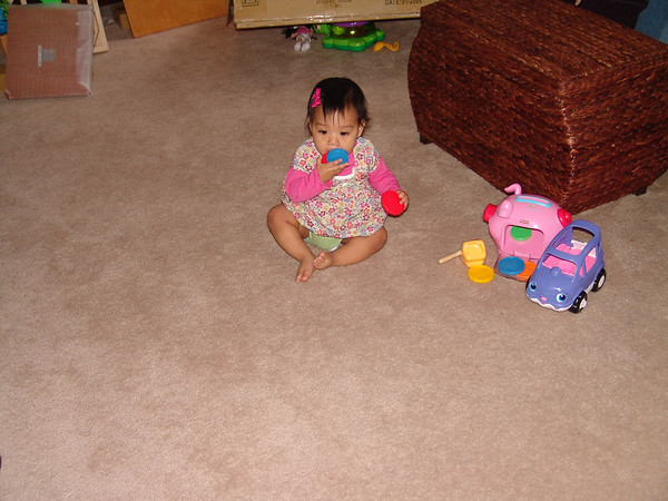 Lily1stBirthday 007