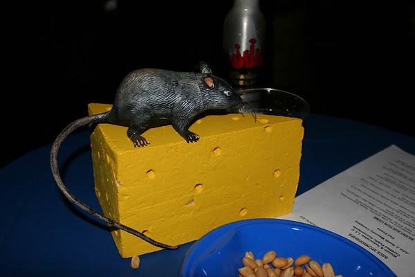 mouse races 3-12-06 025
