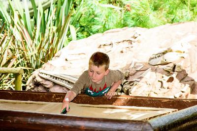 Toby digging for Dinosaur Bones
